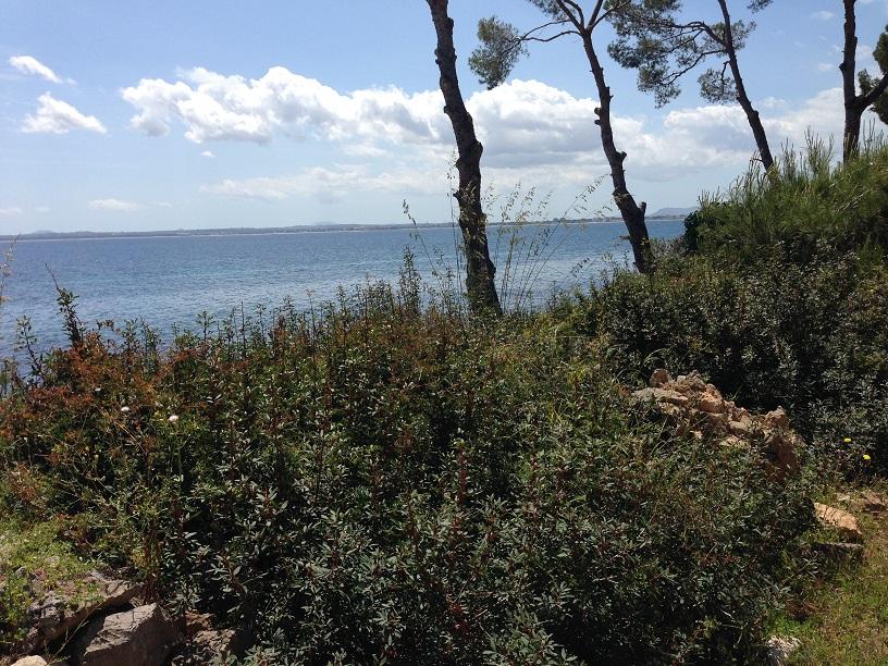 Mallorca: Port d'Alcúida, Burgers & Airport Fun