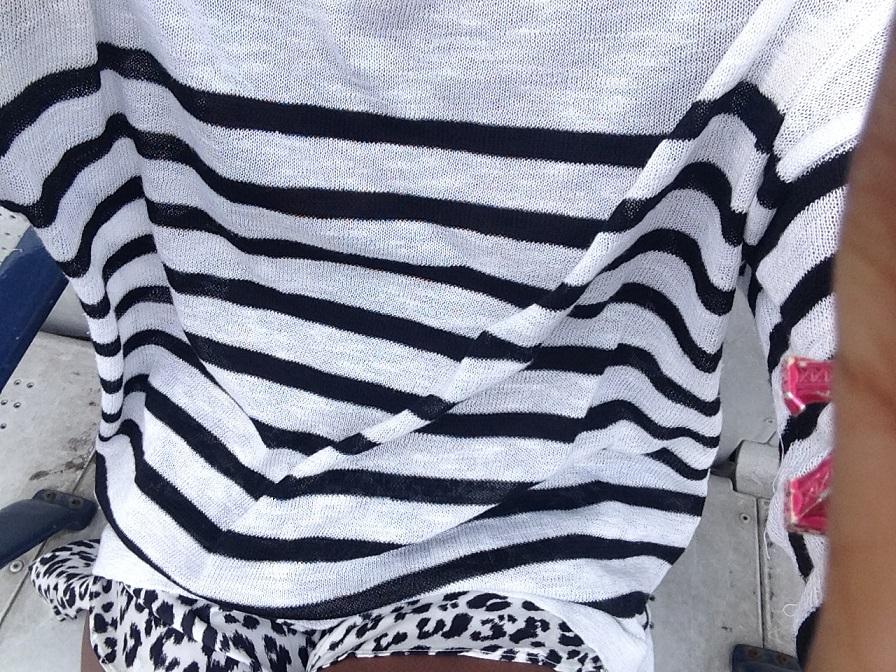 Leopard Print Shorts Pt. II